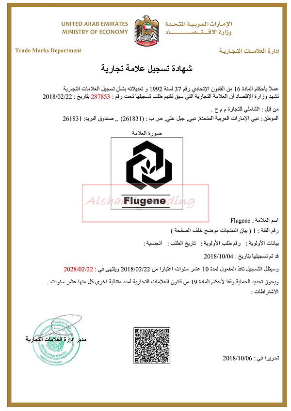 Flugene_watermark (8)-1.jpg