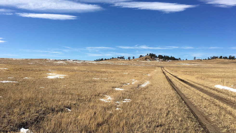 5 Acres of Colorado Land with Great Views!