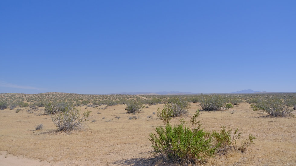 20 Acres in Edwards, CA - 2 Hours from Los Angeles