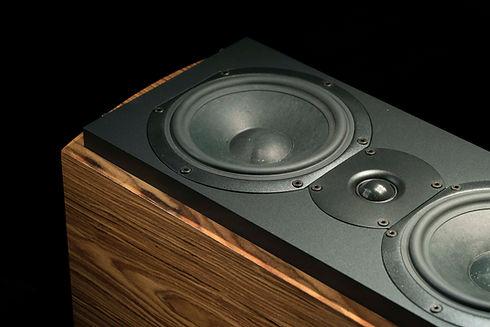 Triad Speaker.jpeg