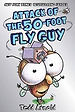 attack of the 50 foot fly guy 7.jpg