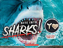 bite into sharks 11.jpg