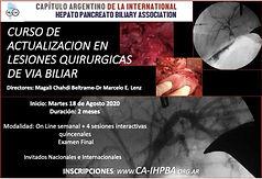 Curso de Actualizacion en Lesiones Quirurgicas de Via Biliar