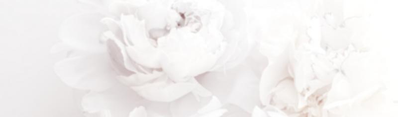 WhiteIsabella Ivory-2.png