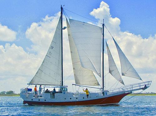 Boatswain Membership