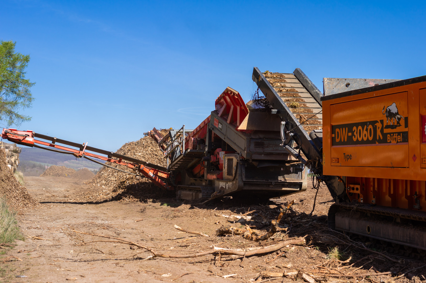 Wood clearing Fasque-3.jpg