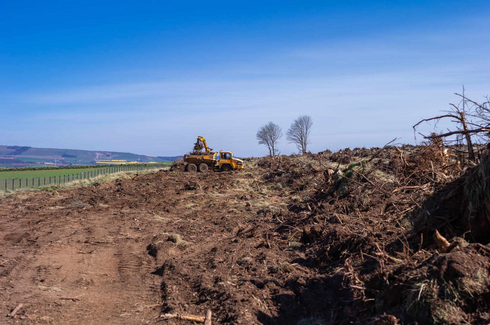 Wood clearing Fasque-10.jpg
