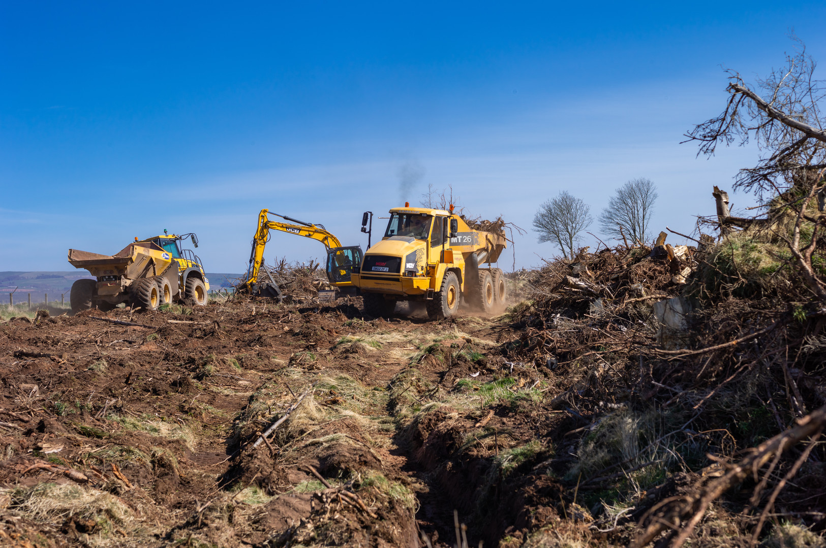 Wood clearing Fasque-12.jpg