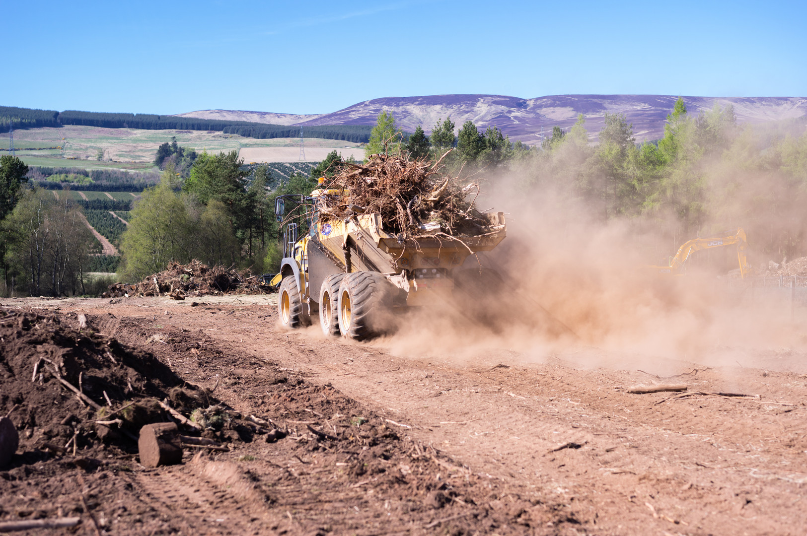 Wood clearing Fasque-8.jpg