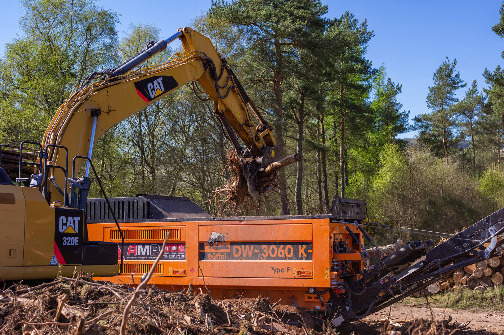 Wood clearing Fasque-23.jpg