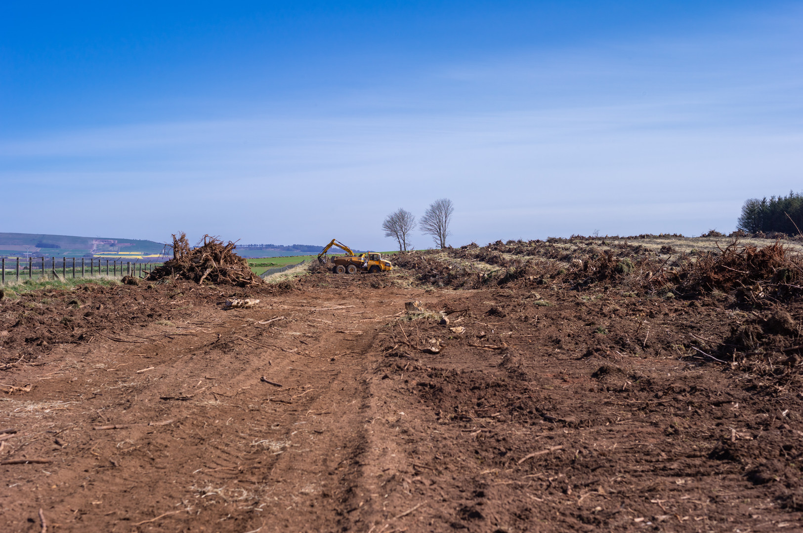 Wood clearing Fasque-9.jpg