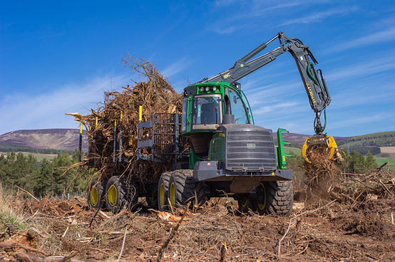 Wood clearing Fasque-57.jpg