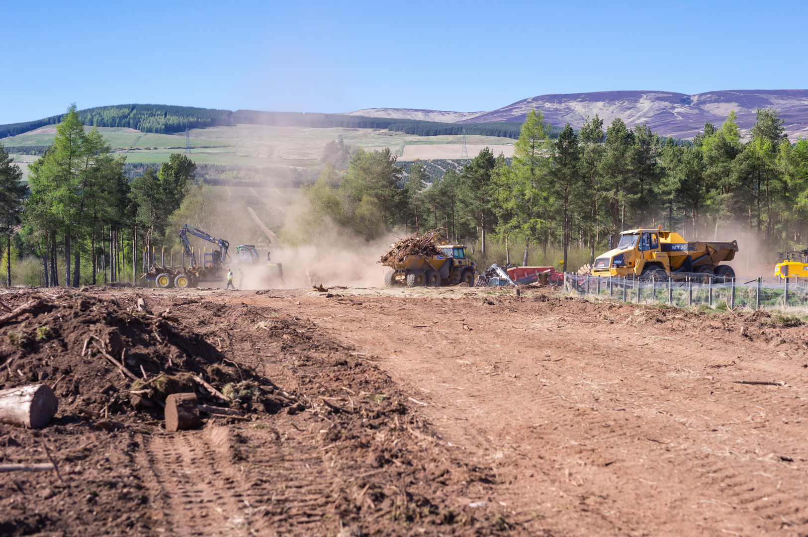 Wood clearing Fasque-16.jpg