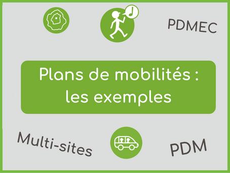 Plans de mobilités : exemples