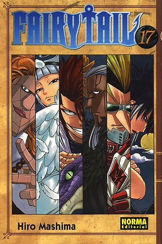 FAIRY TAIL 17