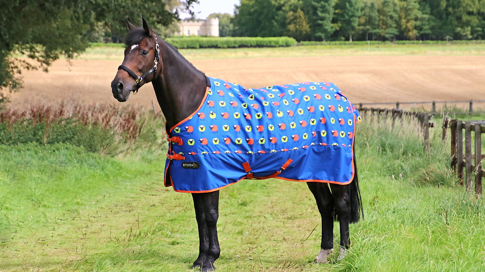 StormX Original Simon the Sheep 50g Turnout Rug