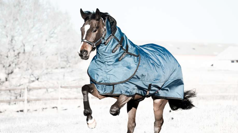 Performance Turnout Rug -200g/400g