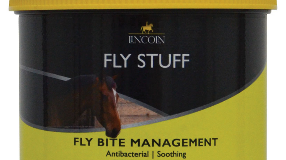 Lincoln Fly Stuff