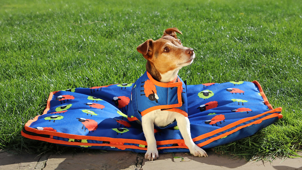 Hy Simon the Sheep Waterproof Dog Coat