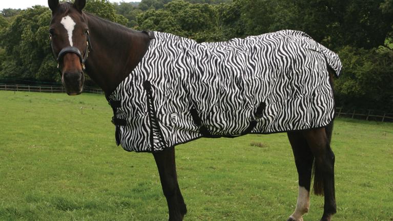 Zebra Rain Sheet