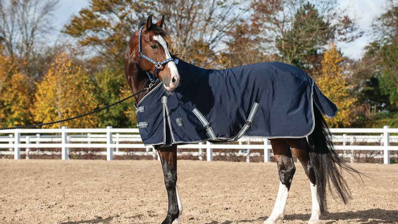 Catago Stable Sheet
