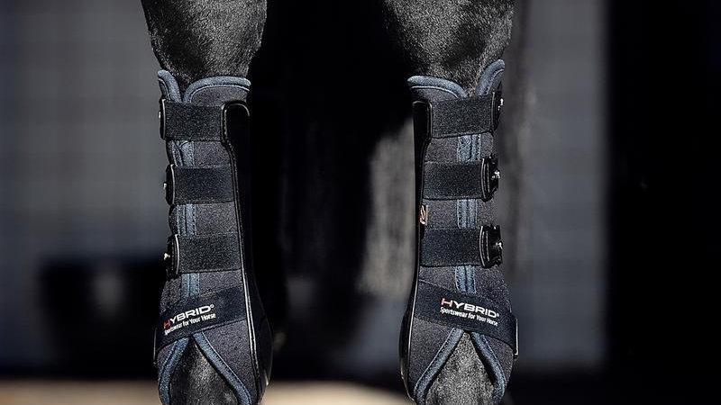 Catago Hybrid Dressage Boots