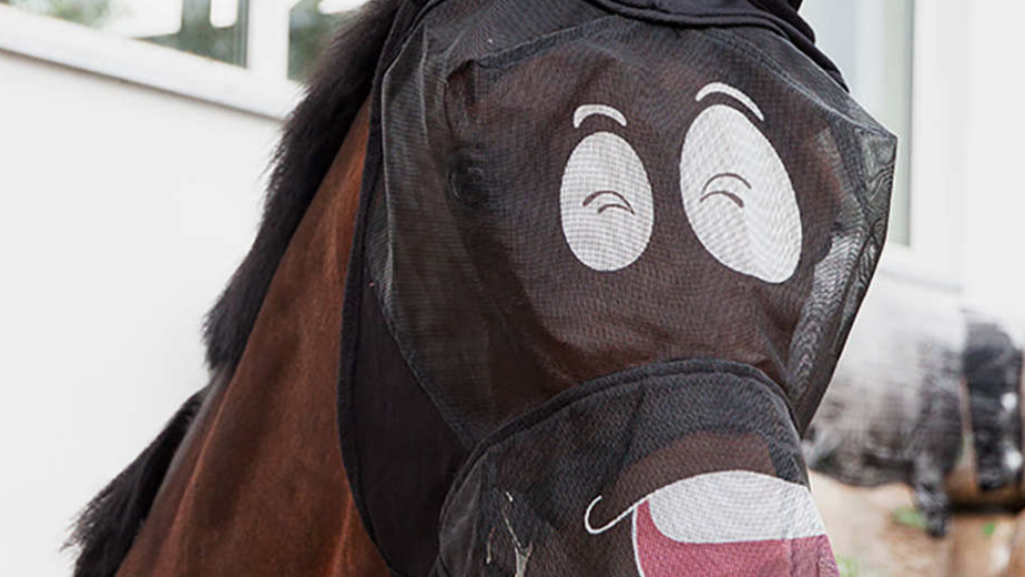Pfiff Comedy Fly Masks