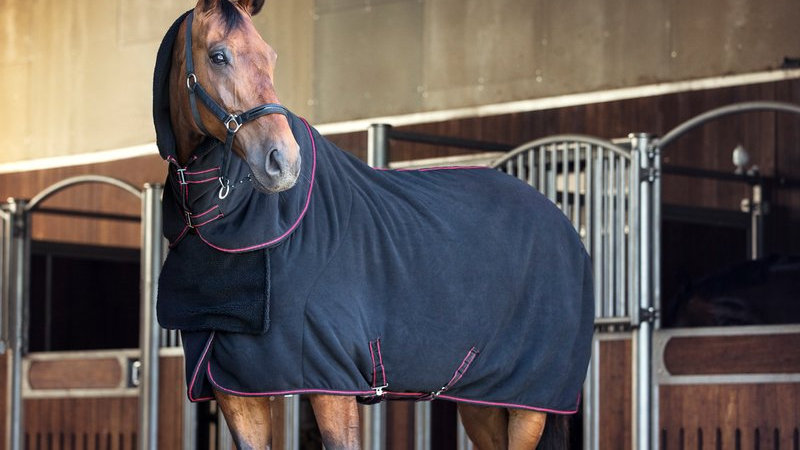 Catago Transport and training rug