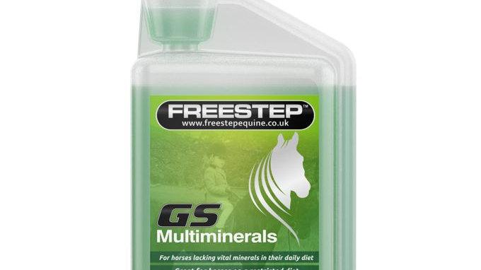 GS Multiminerals