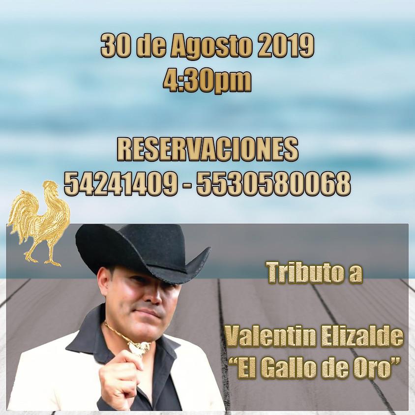 "Tributo a Valentin Elizalde ""El Gallo de Oro"""