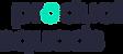 ps_logo_rz_rgb_02.png
