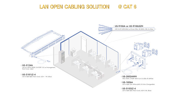 CAT6-01.jpg