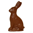 Chocolate bunny.png