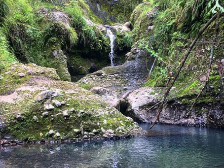 Temporada de lluvias, las increíbles cascadas que se forman en Tepoztlán, Morelos.