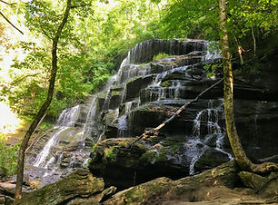 Lak_YellowBranchFalls_Waterfall.JPG