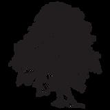 IOB - tree.png