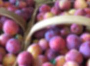 Callaham Orchards.jpg