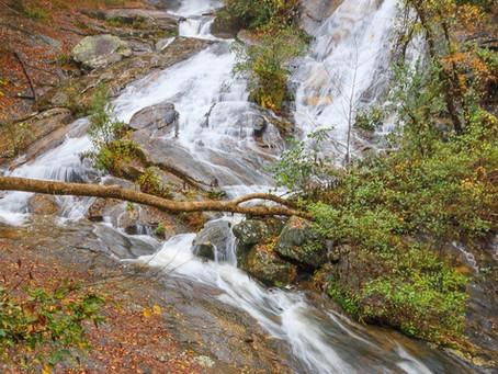 7 Short and Sweet Waterfall Hikes in South Carolina