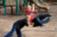 mile creek county park playground.png