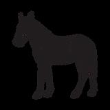 IOB - horse.png