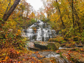 The Best Spots to View Fall Foliage in the South Carolina Mountains