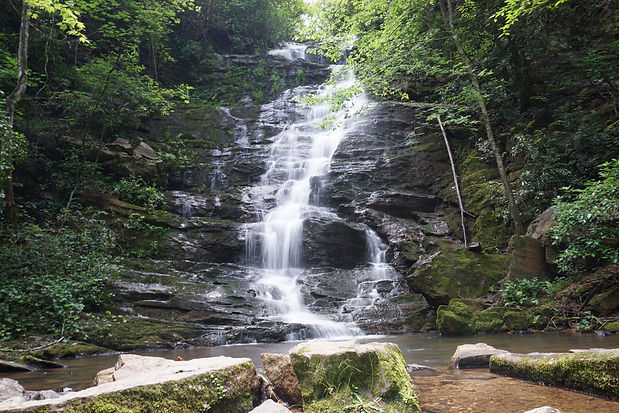 reedy falls.JPG
