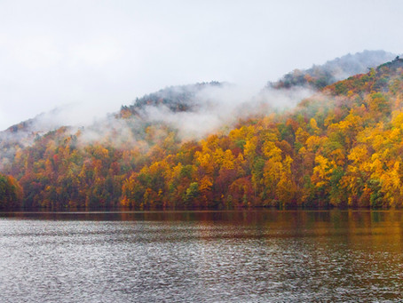 Primitive Camping in the South Carolina Mountains
