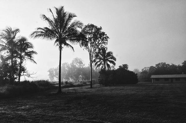 mist..jpg