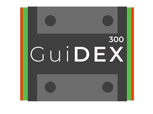 Guidex logo f1-05.jpg