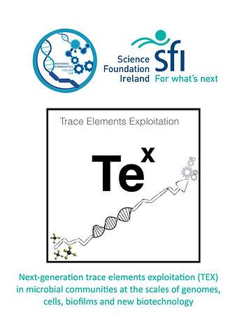 TEX logo jpg.jpg
