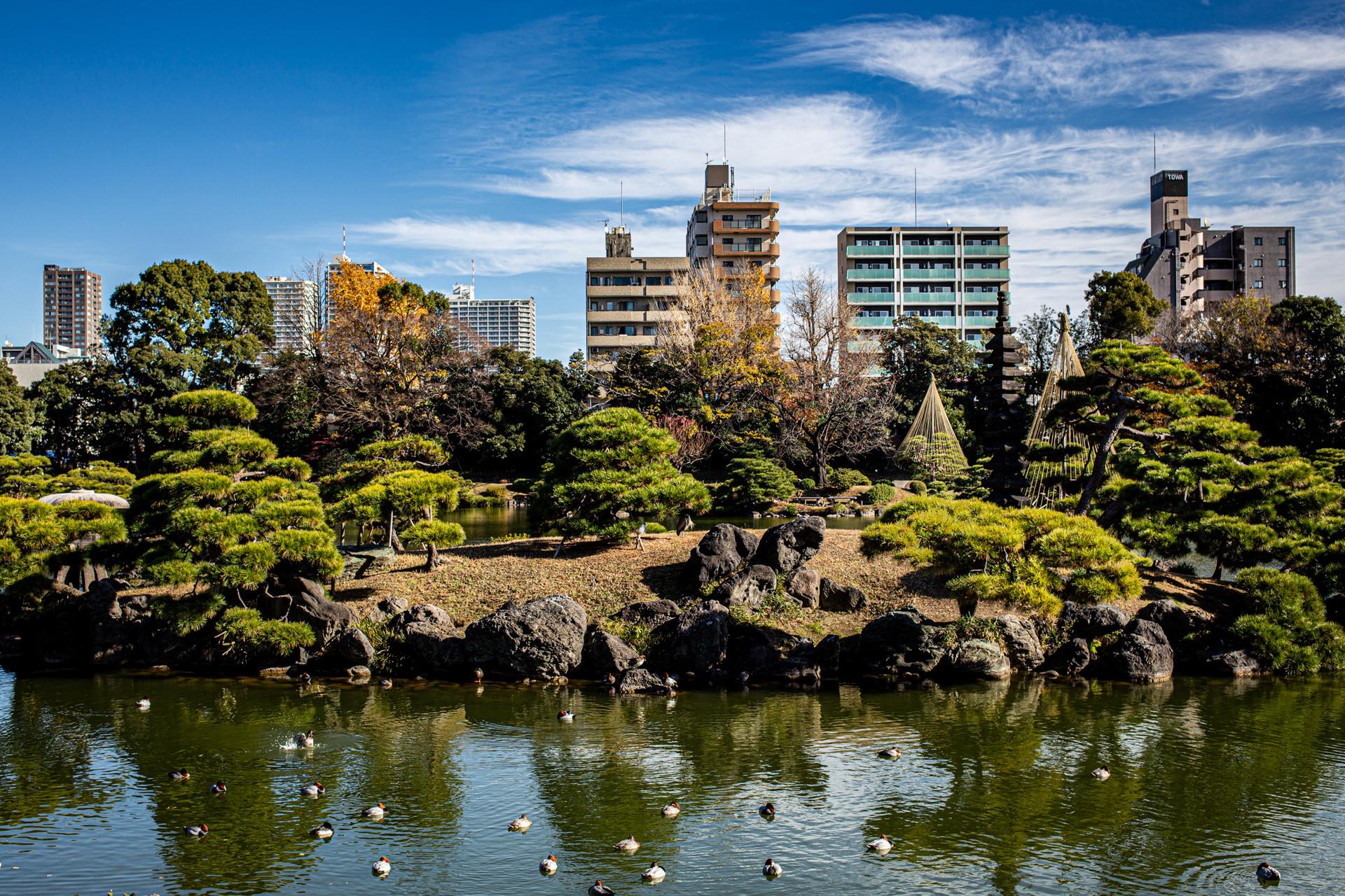 Kiyosumi Gardens. Koto City, Tokyo.