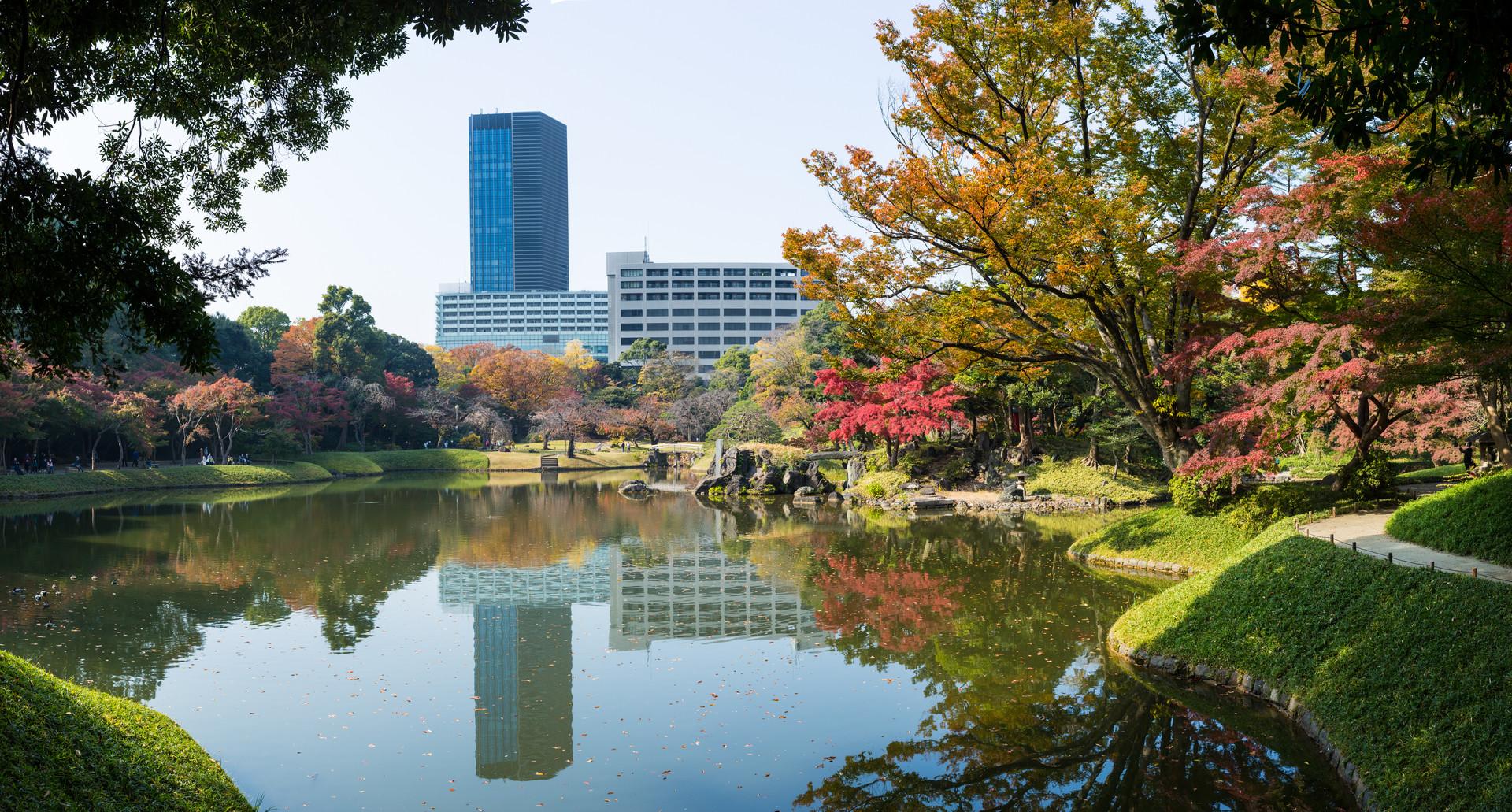 Koishikawa Korakuen Gardens. Bunkyo, Tokyo.