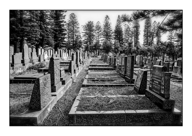Old East Bank Jewish Cemetery.  East London, Eastern Cape, South Africa.