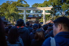 Approach to Meiji Jingu Shrine. Shibuya, Tokyo.